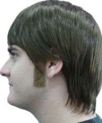 Sideburns - Straight- Brown