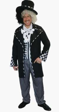 Mad Hatter Male Adult Costume