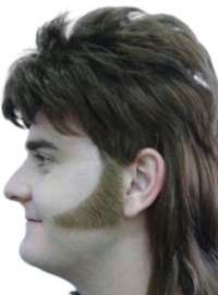 Sideburns - 70S Curved - Brown