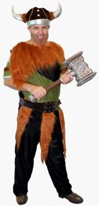 Viking Adult Costume